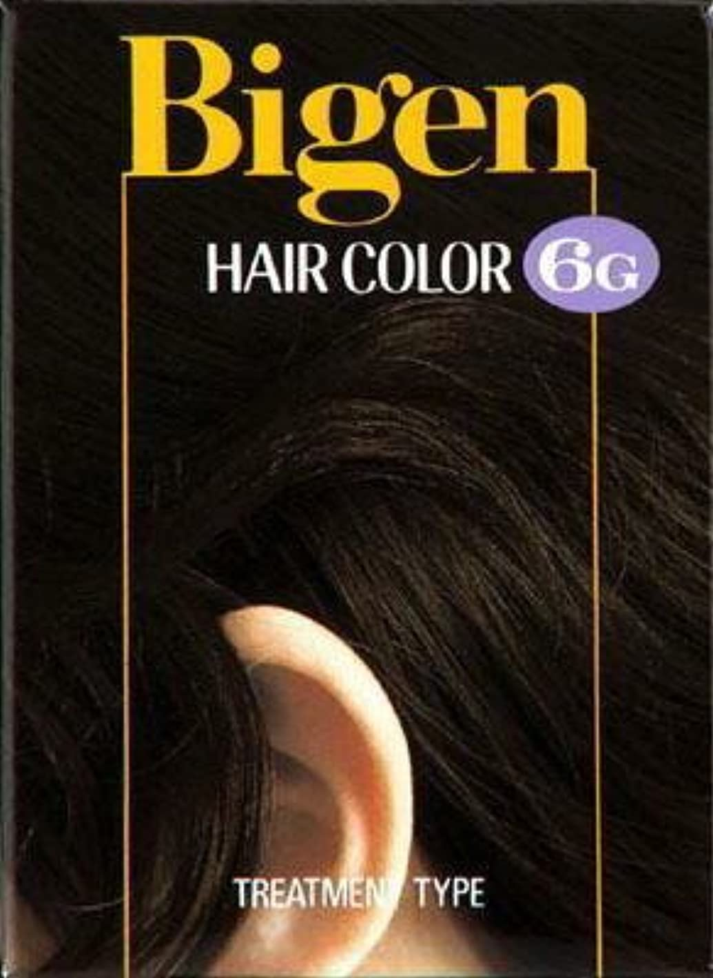 ビゲン ヘアカラー 6G 自然な褐色 × 10個セット