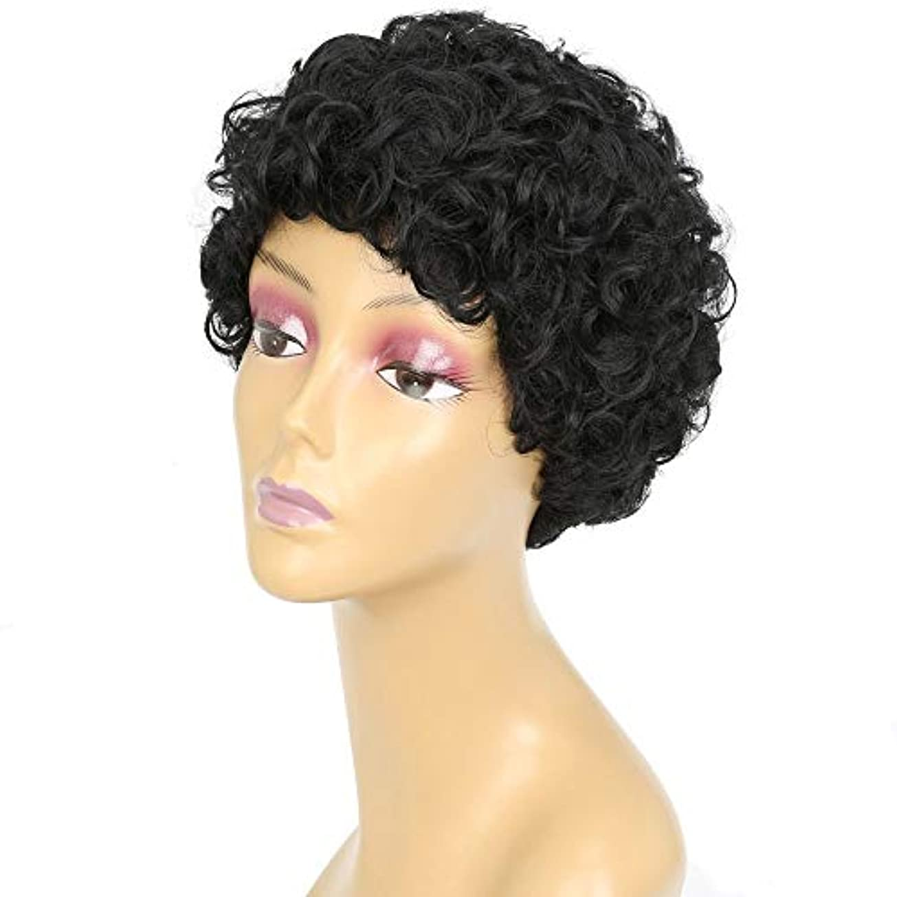 ラッチダイアクリティカルバーストWASAIO 女性の黒の巻き毛ウィッグ爆発的な縮れたスタイルスタイルの交換用アクセサリー自然な絶妙なローズネットカバー(ブラック) (色 : 黒)