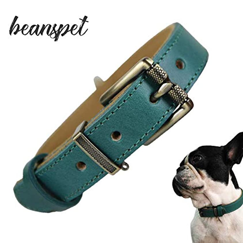 ひそかに主張する成功するbeanspet 犬 首輪 ベルト首輪 革 ベーシック レザー 犬用 可愛い おしゃれ 2層設計 3色5サイズ (M, グリーン)
