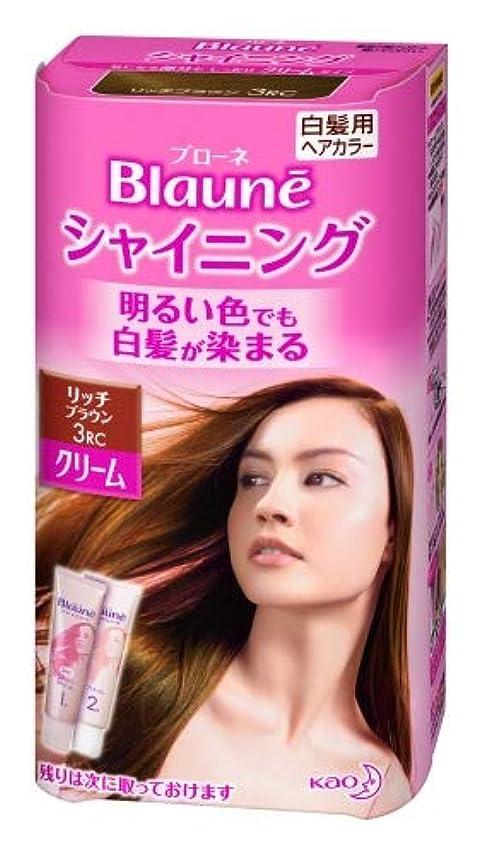 流行している拒否曇った花王 ブローネ シャイニングヘアカラー クリーム 1剤50g/2剤50g(医薬部外品)《各50g》<カラー:リッチBR>