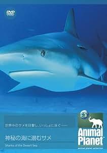 アニマル・プラネット 神秘の海に潜むサメ [DVD]