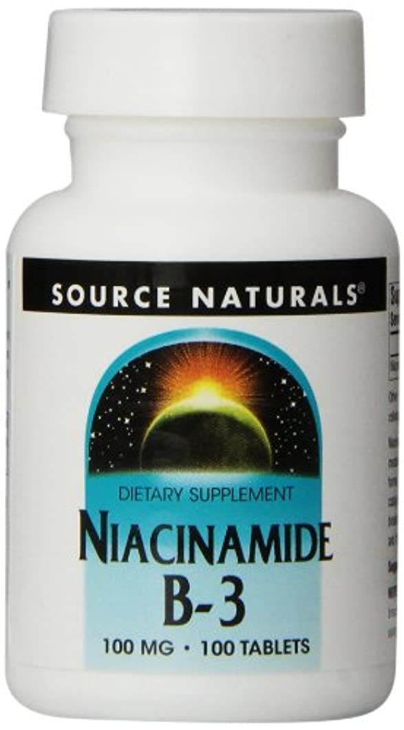 フィルタ合体残忍な海外直送品 Source Naturals Niacinamide, 100 Tabs 100 MG