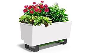 GlowPear Urban Garden Self-Watering Mini Bench Planter