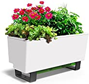 Glowpear Mini Bench Self Watering Planter