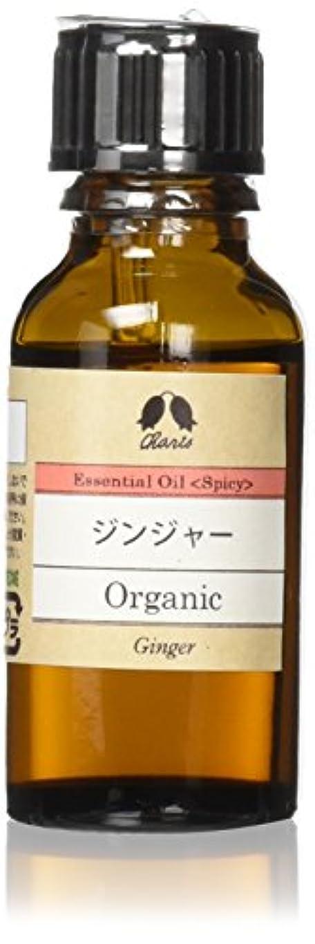 インド反乱煙突ジンジャー Organic 20ml