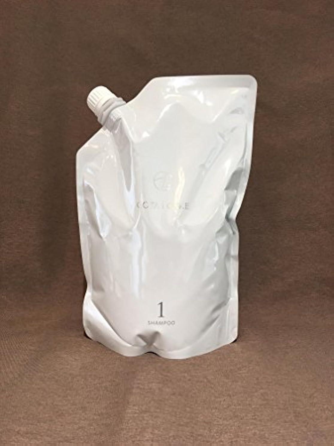ヘッジ変化するガラスコタ アイケア COTA i CARE シャンプー1 750ml レフィル