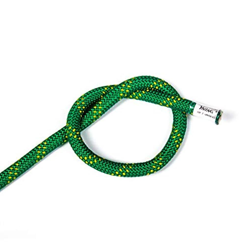 比較的野球コミュニケーションKTYXDE クライミングロープ、スタティックロープ、救命ロープ、空中作業ロープ、ラペリングロープ クライミングロープ (Color : D, Size : 10m)
