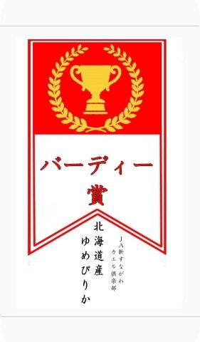 ゴルフコンペの景品に!  バーディー賞 北海道産 ゆめぴりか 令和1年産 (白米 1kg)