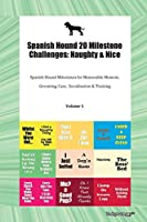 Spanish Hound 20 Milestone Challenges: Naughty & Nice Spanish Hound Milestones for Memorable Moment, Grooming, Care, Socialization & Training Volume 1