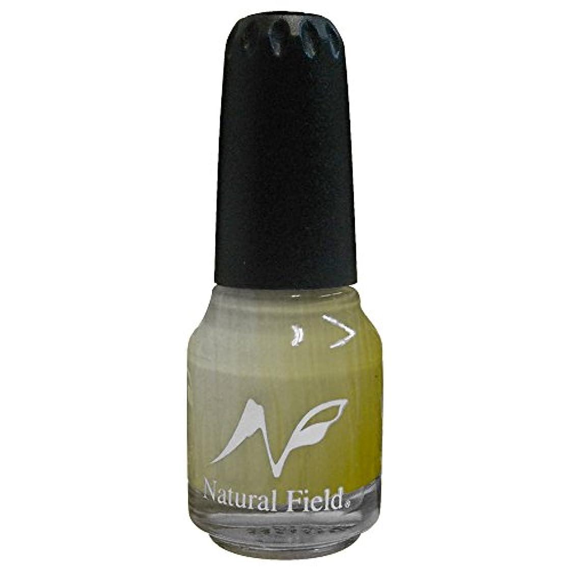 ニックネーム選挙血色の良いNatural Field ネイルポリッシュ パールカラー 2048 R10 12ml