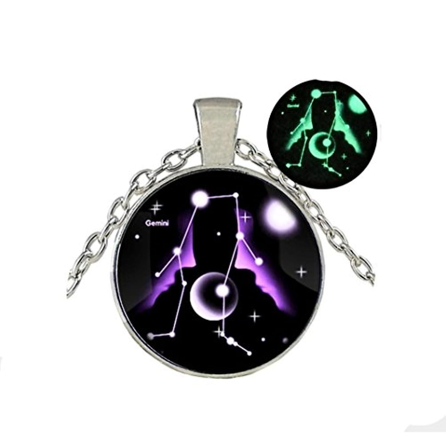 イブブルジョン種Glow in the Dark /グローネックレス/ Glowing Jewely / Constellation Geminiジュエリー