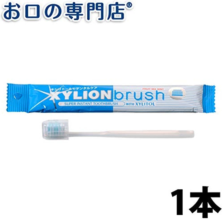 勉強するみテレビ局キシリオンブラシ XYLION brush 1本