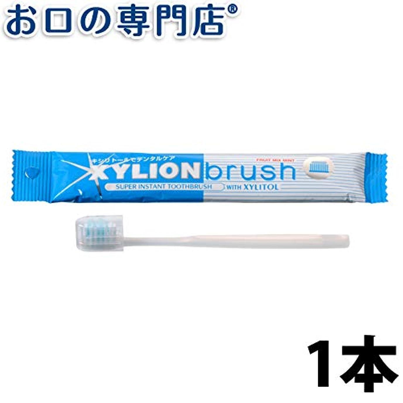 上に築きます移行限定キシリオンブラシ XYLION brush 1本