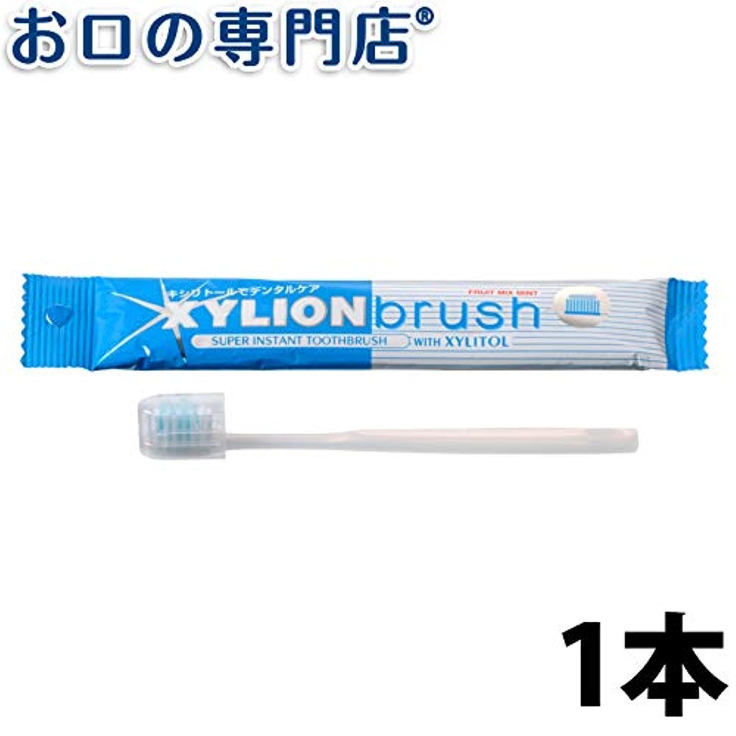 有効化勧める極小キシリオンブラシ XYLION brush 1本