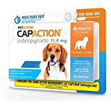 CapAction Small Dog 6ct
