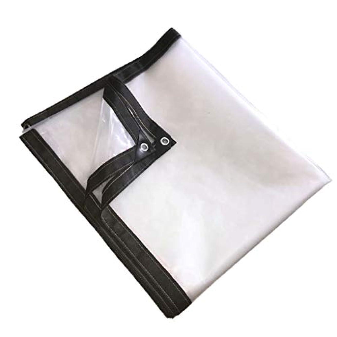トレーダーリース教師の日透明ポリエチレン ターポリン 防水 防雨プラスチック布フィルム 老化防止 絶縁 植物の暖かさ フラワーズ バルコニー PE 21サイズ テント