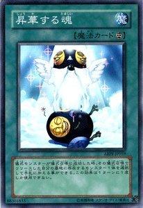 遊戯王 ABPF-JP059-N 《昇華する魂》 Normal