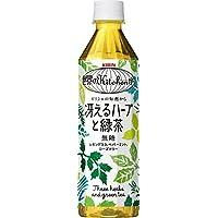 キリン 世界のKitchenから 冴えるハーブと緑茶 500ml×24本