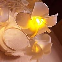 FrangipaniライトLEDのランタンの装飾手作りの人工のランタンフラワーフェアリーガーデンウェディングパーティーバニティキッズウォールランプフラワーホームデコレーション(暖かい白)