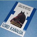 QUO クオカード 台紙付 2103年度 JRA賞 年度代表馬 ロードカナロア