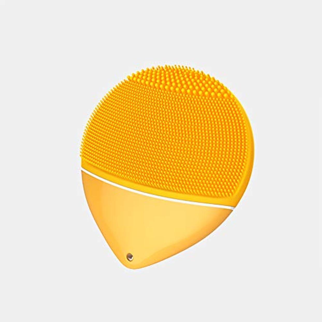 オリエンテーションリスワームタイマーを備えた葉顔クレンジングブラシと顔マッサージ器、再充電可能な防水フェイシャル浄化システム、あらゆる皮膚タイプのための柔らかいシリコーンでアンチエイジングスキンケアフェイスクレンザー