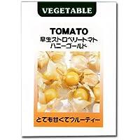 [野菜タネ]早生ストロベリートマトハニーゴールドの種3袋セット ノーブランド品