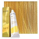 Clairol Professional - SOY4PLEX - Lightest Golden Blonde 10G - 2 oz / 57 g