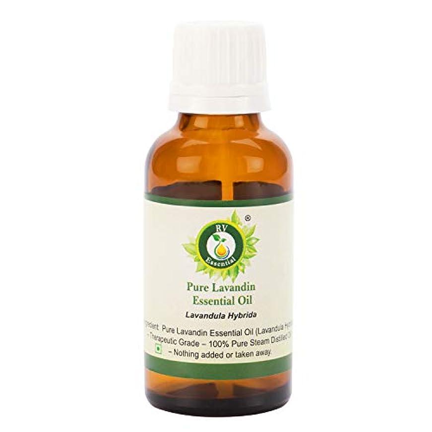 パーフェルビッドすずめ努力ピュアLavandinエッセンシャルオイル300ml (10oz)- Lavandula Hybrida (100%純粋&天然スチームDistilled) Pure Lavandin Essential Oil