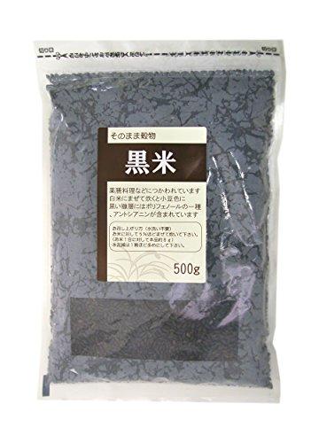 ライスアイランド 素材 黒米 国産 500g