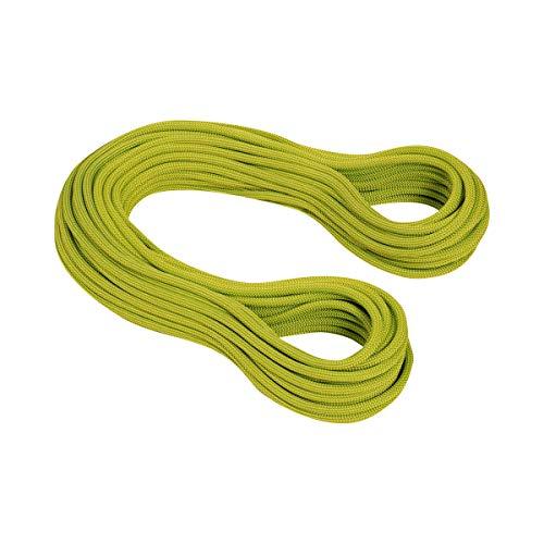 MAMMUT マムート 登山クライミングロープ 9.5 Infinity Dry 50m 2010-02641 pappel-limegreen