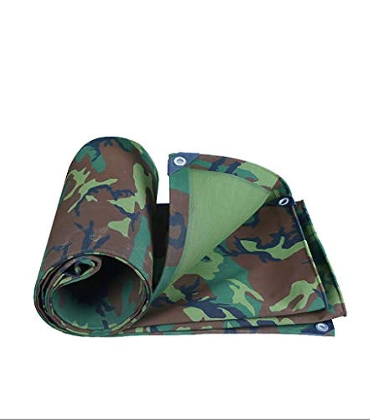 アライアンス魅力的であることへのアピールねばねば12J-weihuiwangluo 屋外のテントの防水シートの厚い防水紫外線抵抗力がある腐敗の破損および抵抗力がある防水シート (Color : A, サイズ : 8x10m)