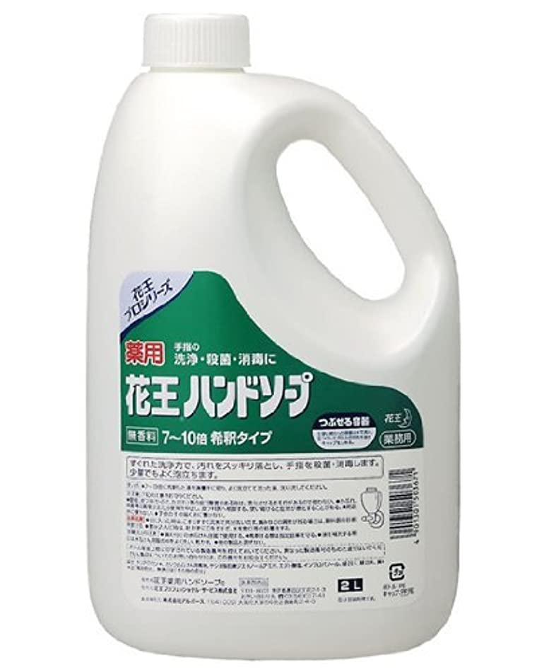 温度チキンリンケージ薬用 花王ハンドソープ 2L×(3セット)