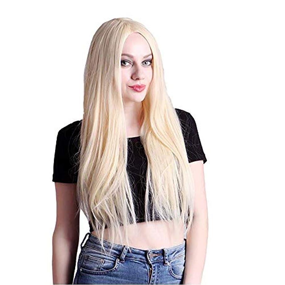 適用済みメイエラ虚偽ファッション女性のかつら、ナチュラルロングホワイトホワイトcosストレートケミカルファイバーシルクヘアーセット、パーティーロールプレイングかつら
