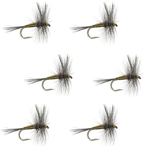 The Fly Fishing PlaceブルーWingedオリーブBWOクラシックTrout Dry Fly Fishing Flies–セットof 6Fliesサイズ18