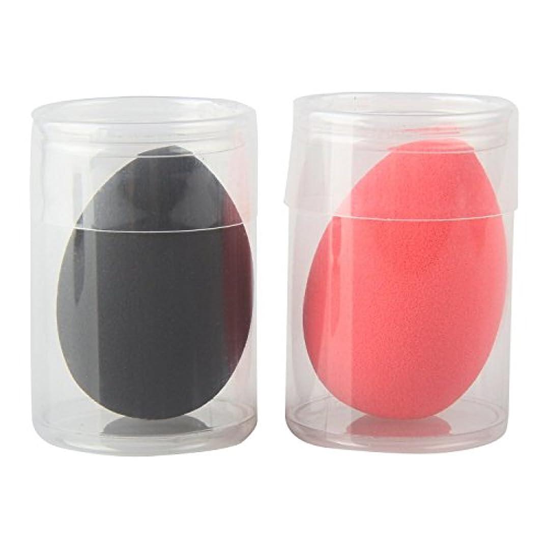 分析的炭素漏れWOVTE 高品質 多機能 もちもちした化粧スポンジパフ ファンデーション BBクリーム メイクアップベース 携帯便利 清潔しやすい ケース付き 2個セット