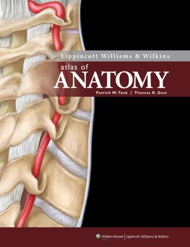 Download Lippincott Williams & Wilkins Atlas of Anatomy (Point (Lippincott Williams & Wilkins)) 0781785057