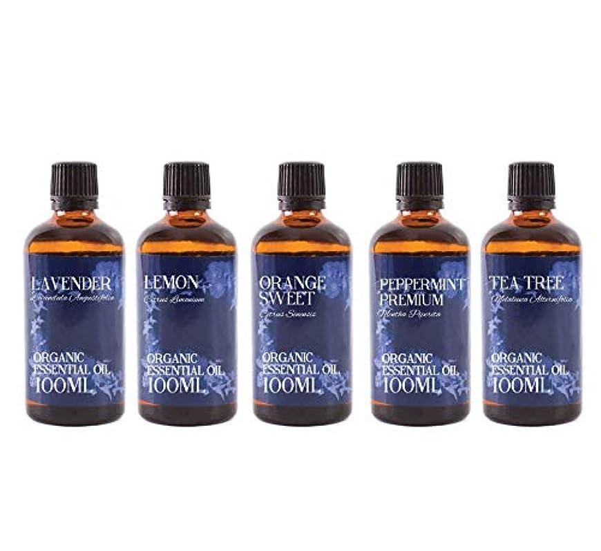 役割シングルエーカーMystic Moments | Organic Essential Oil Starter Pack - Favourite Oils - 5 x 100ml - 100% Pure