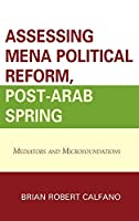 Assessing Mena Political Reform, Post-Arab Spring: Mediators and Microfoundations