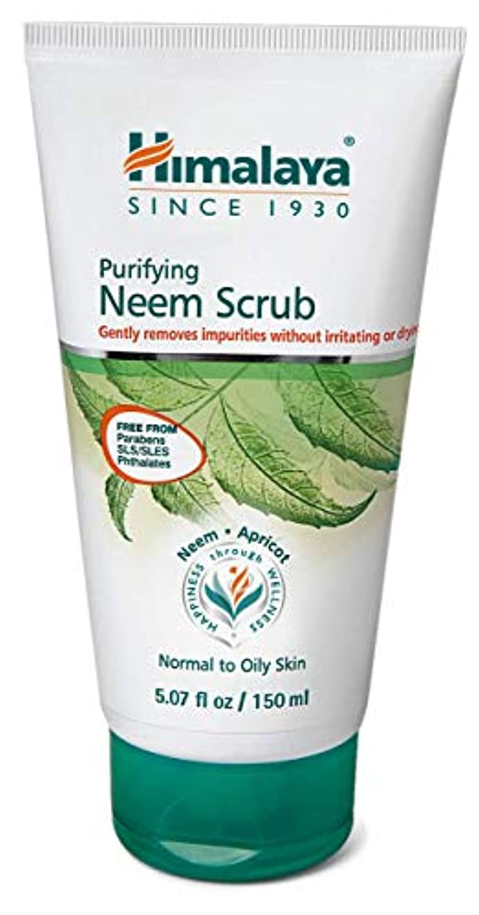 息切れ逃れる鎮静剤Himalaya Herbal Purifying Neem Scrub 100GM