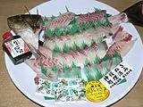 関いさき(大)1尾魚体約500g位~約600g位を加工【姿..