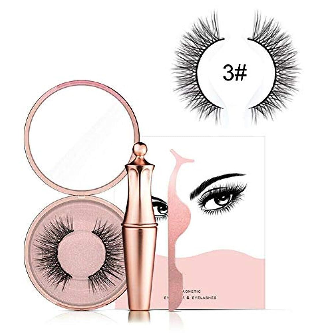 固体永久に無効にするメイクアップ用磁気アイライナーリキッドセット(#03(Liquid Eyeliner+Luxe+Tweezers))