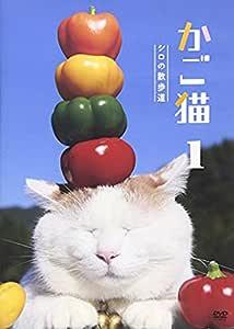 かご猫1 シロの散歩道 [DVD]