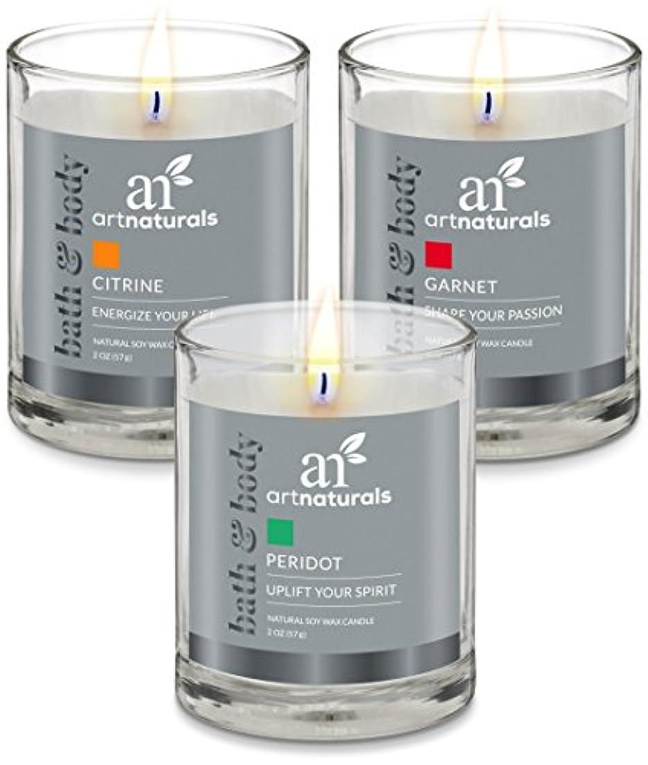 スキムカール肘ArtNaturals Scented Candle Gift Set – 6 PieceアロマセラピーのセットFragrance大豆ワックス – Made in USA with Essential Oils – For...
