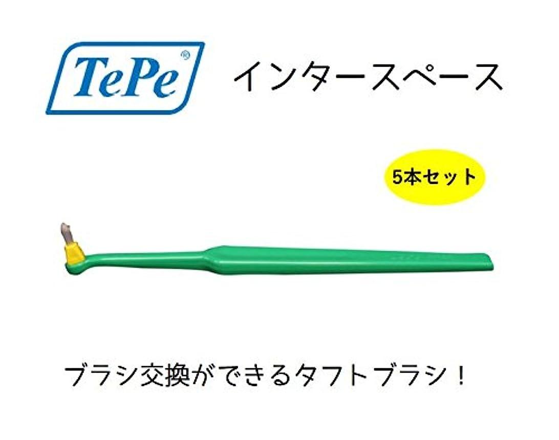 高齢者によるとコンクリートテペ インタースペース ソフト 5本 TePe interspase