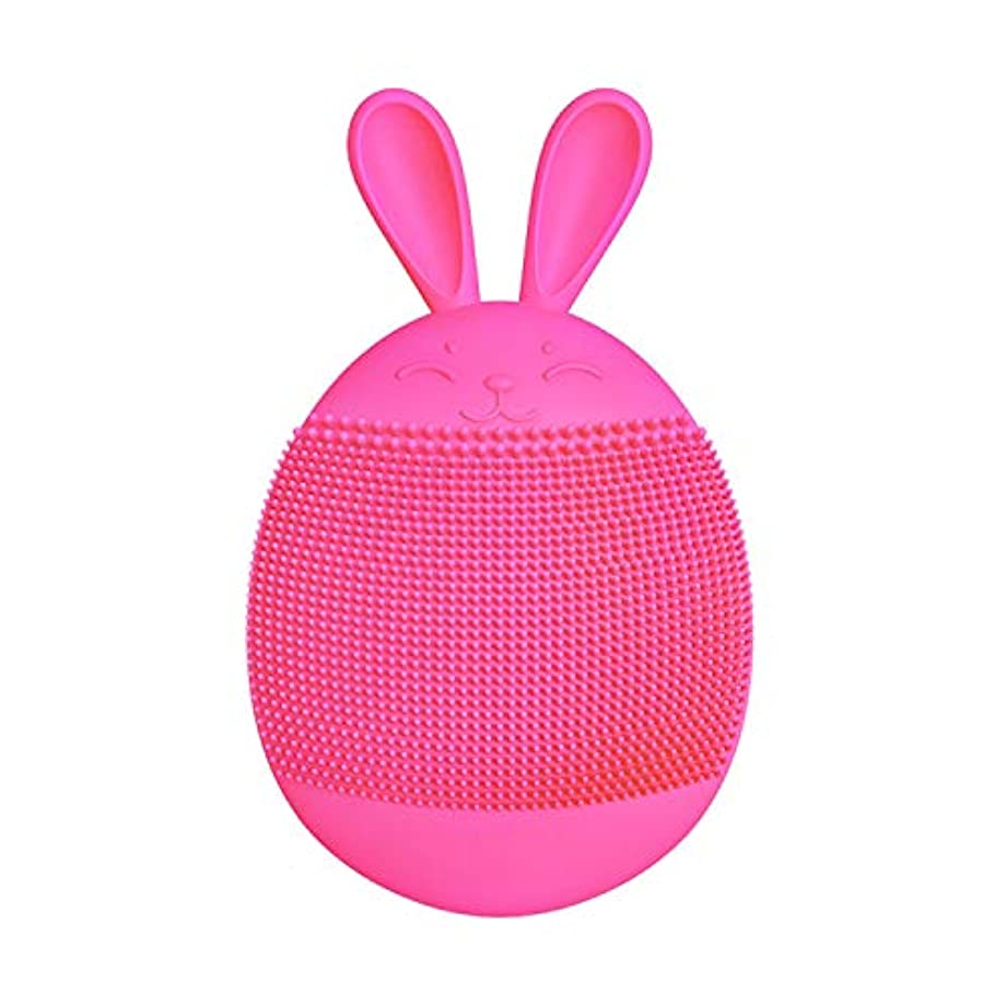 海岸ロゴ教授クレンジングブラシ、シリコンハンドヘルド電動クレンジング楽器多機能ポータブル洗顔美容器具(ピンク),D