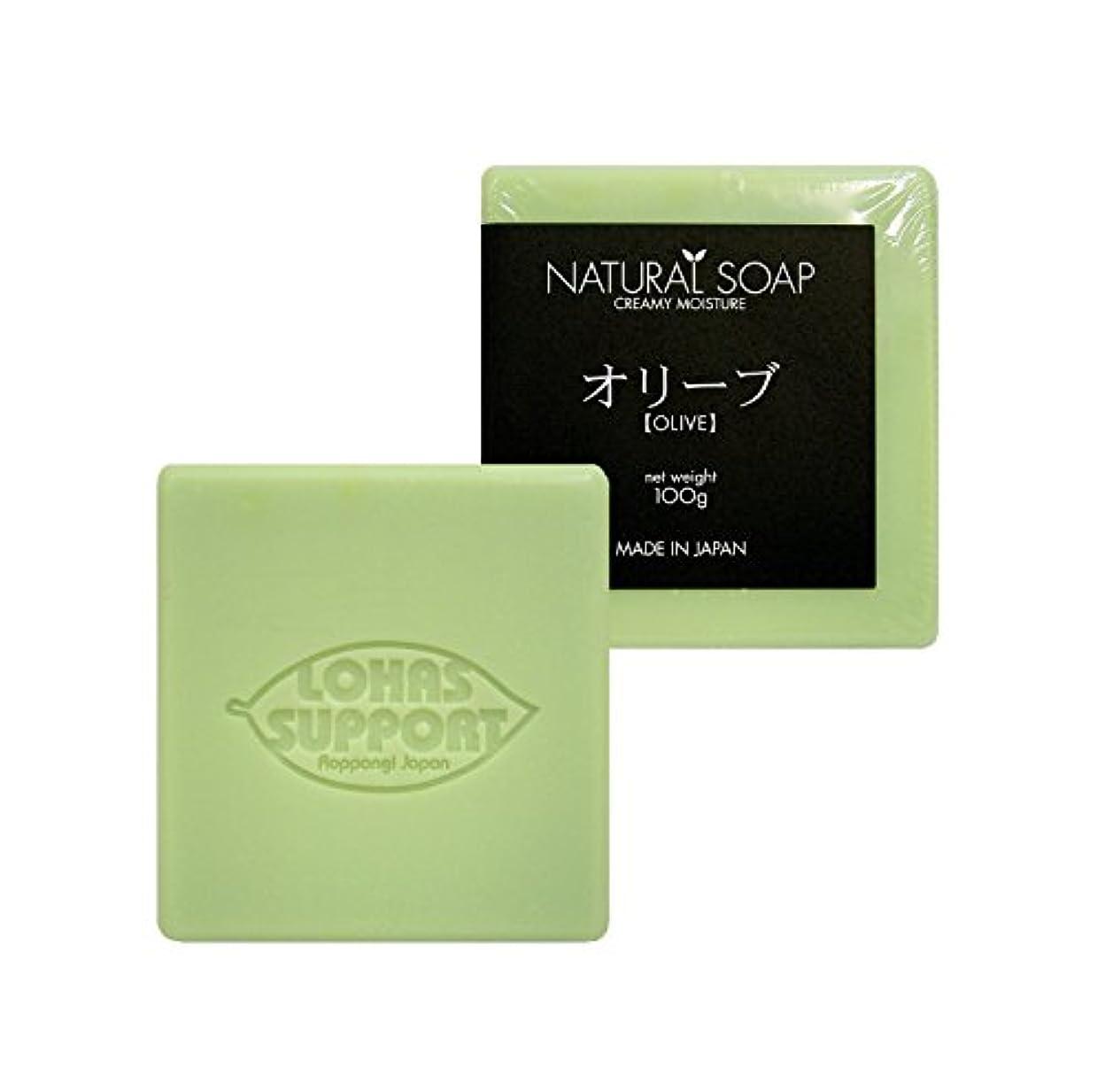 かんがい悪因子考えNATURAL SOAP
