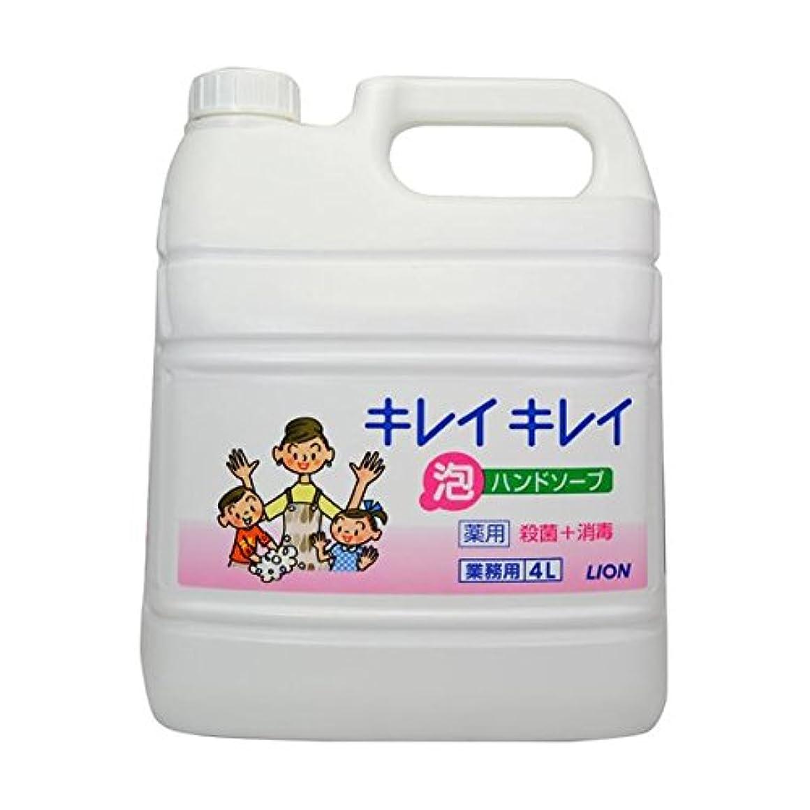 洞窟コメントキャッシュキレイキレイ薬用泡ハンドソープ 4Lボトル×2個+専用泡容器700mLセット