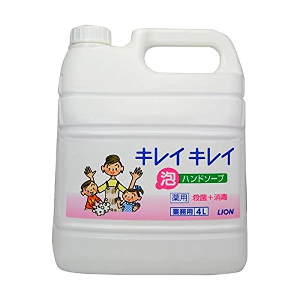 神話カトリック教徒ペパーミントキレイキレイ薬用泡ハンドソープ 4Lボトル×2個+専用泡容器700mLセット