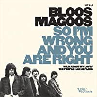 So I'm Wrong and You Are Right/Wild Abou [7 inch Analog]