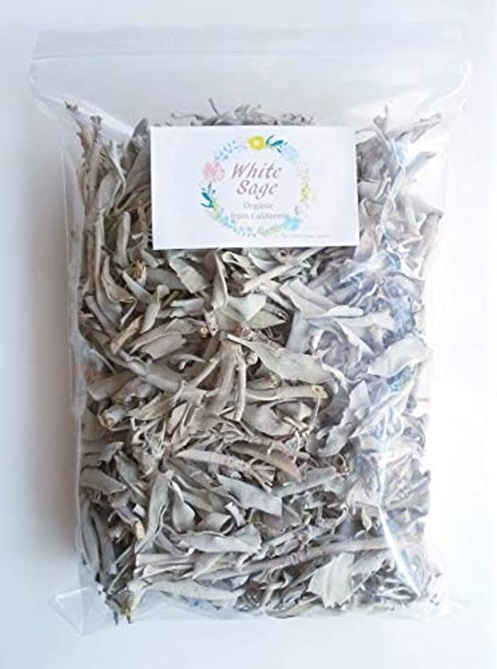 流行まあ閲覧するホワイトセージ 無農薬 浄化用 100g オーガニック カルフォルニア産 直輸入 お部屋 パワーストーン (アウトレット)